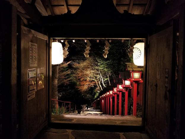 写真: 秋の夜 貴船神社の灯篭のあかり