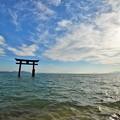 Photos: 湖畔の鳥居