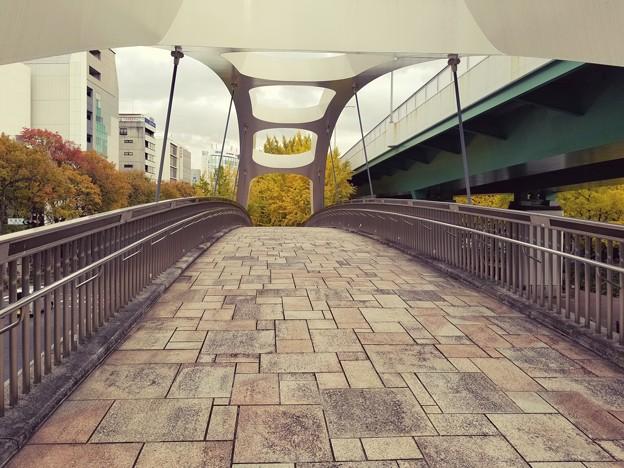 橋の向こうは紅葉の世界