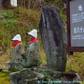 Photos: 毛糸の帽子