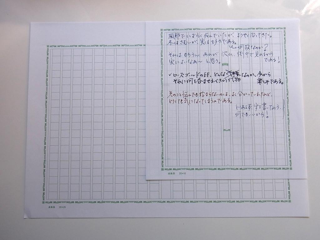 ふたふで箋と飾り原稿用紙