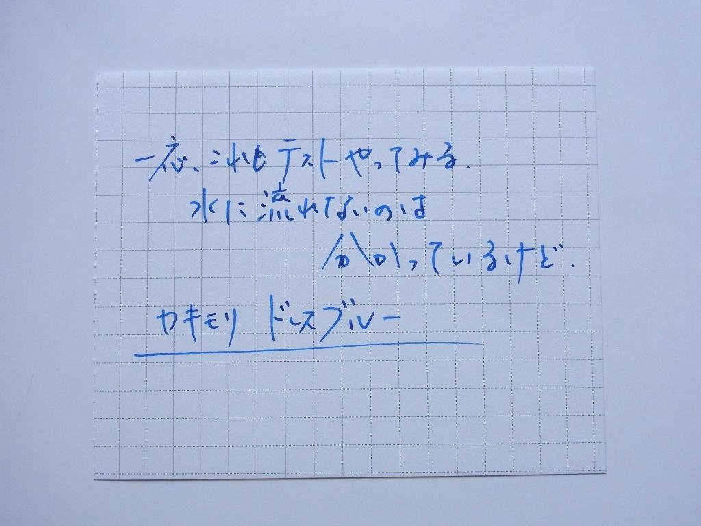 カキモリ 顔料インク ドレスブルー 耐水性テスト Before