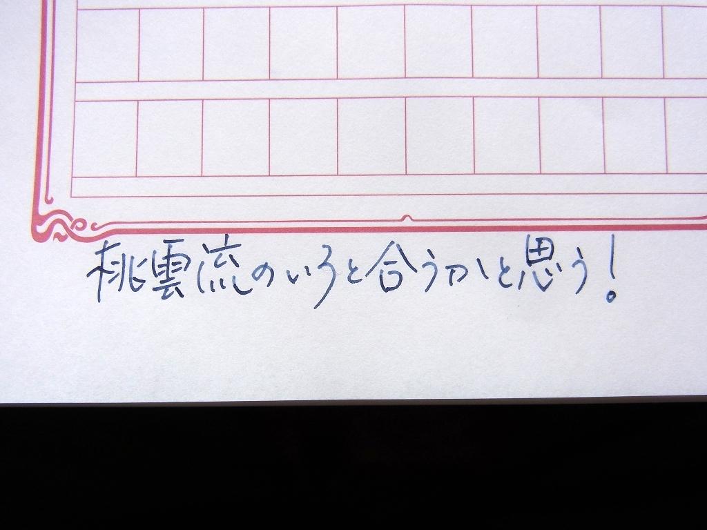 プラチナ #3776 センチュリー シャルトルブルー ロジウム 細軟 + Salix + 桃雲流 #2