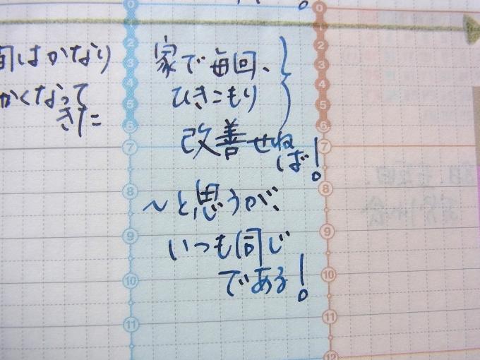 AURORA オプティマ ブルー 細字(スタブ) + PARKER BB + ジブン手帳2016