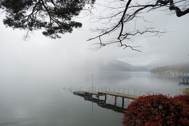 写真: Nikko