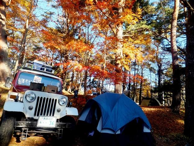 秋のキャンプ2014 10月4週