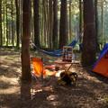 ハンモックキャンプ