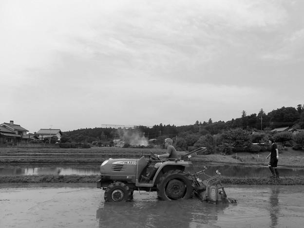 Photos: トラクター