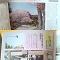 Photos: 雑誌 常陽藝文 茨城の地名