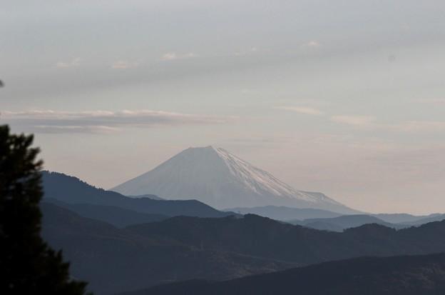 2014年富幕山へ今年☆トミー93回登頂