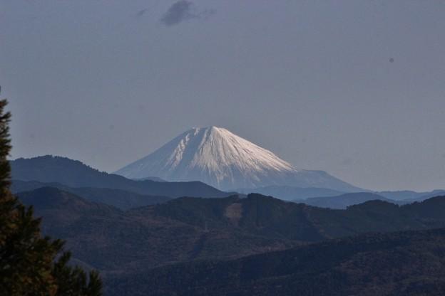 2014年富幕山へ今年☆トミー98回登頂