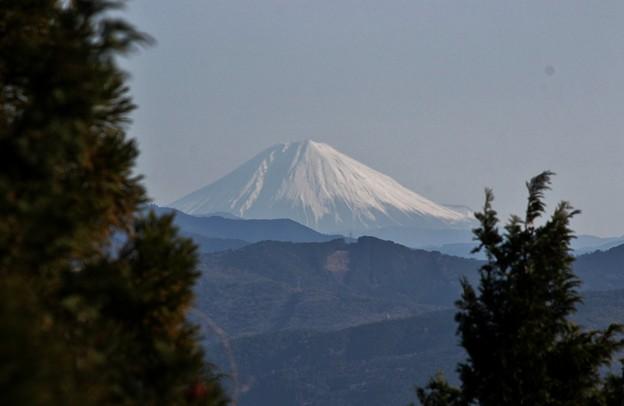 2014年富幕山へ今年☆トミー102回登頂\(^o^)/