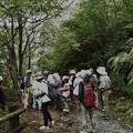 森林公園 自然・生きものかんさつ隊