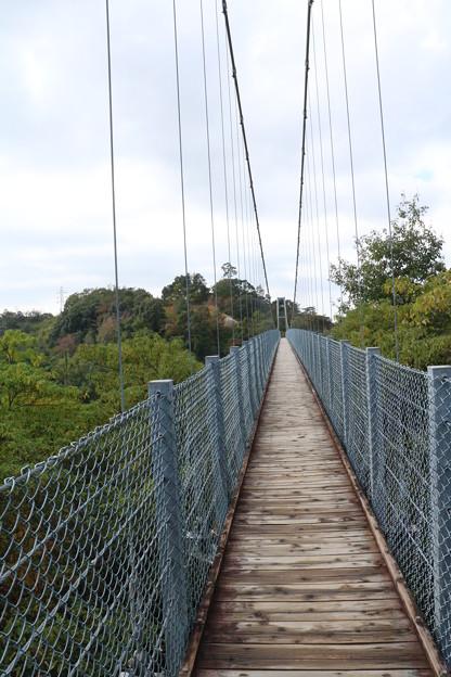 森林公園空の散歩道踏み板補修の為通行止め11月1日~17日