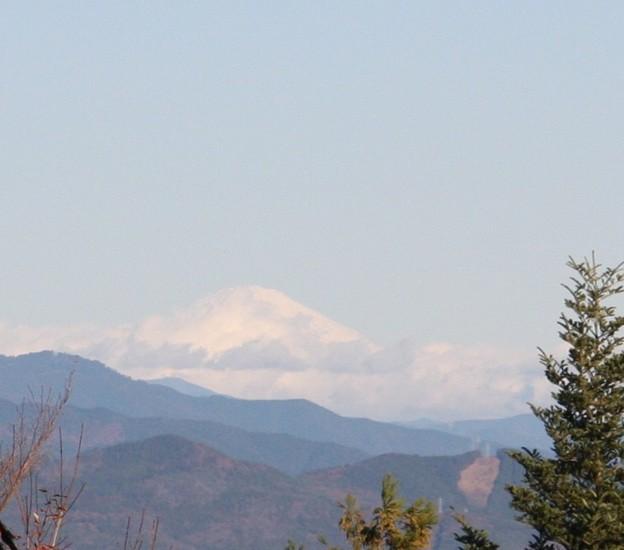 富幕山へ今年☆トミー133回登頂