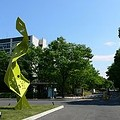 写真: 220px-Saitama_university