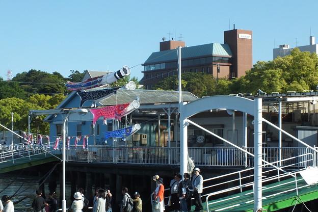 鯉のぼり_横浜 F0019