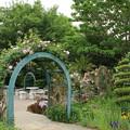 Photos: 植物園_太田 D3746