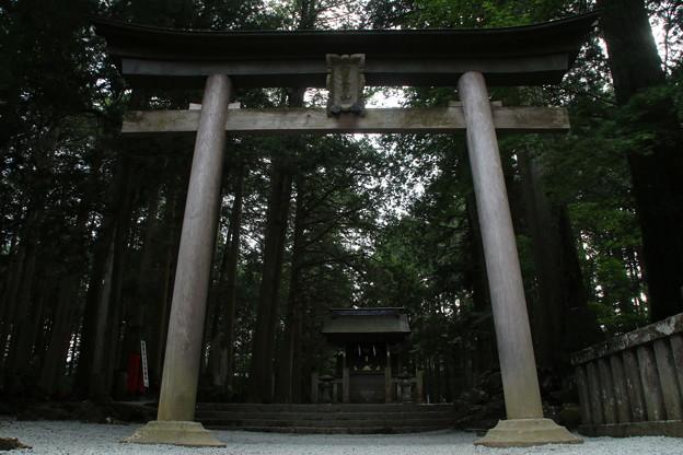 冨士浅間神社 D5020