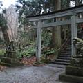 写真: 十和田湖神社 D5770