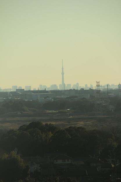 スカイツリー_守谷 D6119