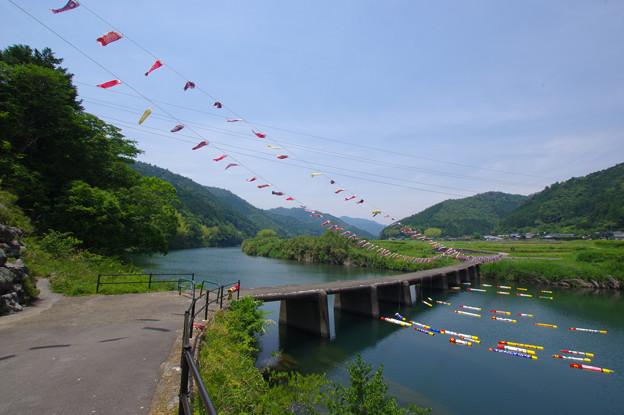 鯉たわむれる橋