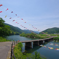 Photos: 鯉たわむれる橋