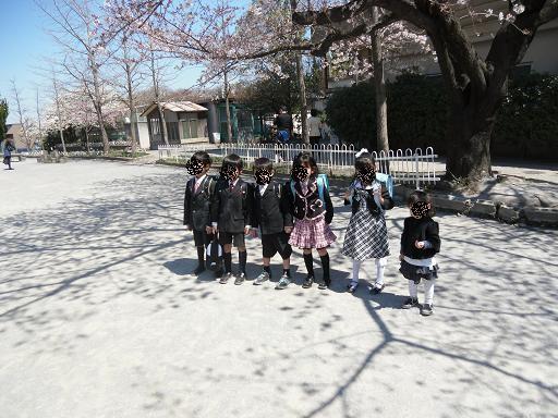 入学式 桜と青空がお祝い