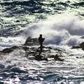 写真: 荒磯の魅力