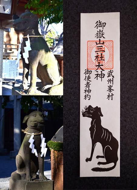 写真: 狼の護符とオオカミの狛犬