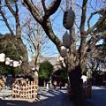 写真: 御嶽神社