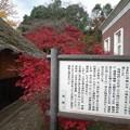 Photos: IMGP3504光市、伊藤公資料館,生家看板