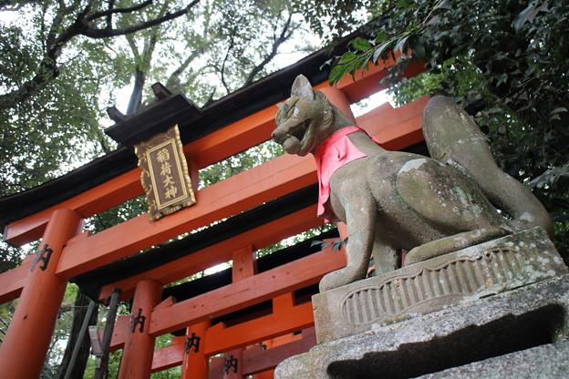 京都一景4