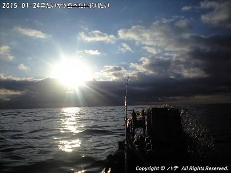 2015-01-24平たいヤツ食べたい釣りたい (3)
