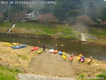 2015-02-21河津桜お花見ツーリングin南伊豆 (14)