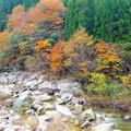 奥津溪の紅葉