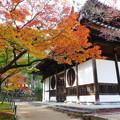 宝福寺の紅葉
