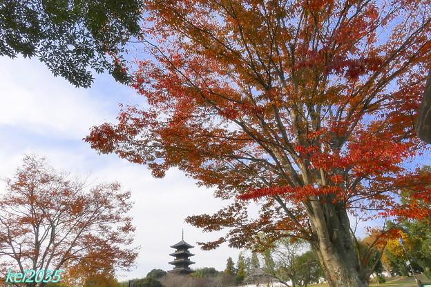 吉備路の秋