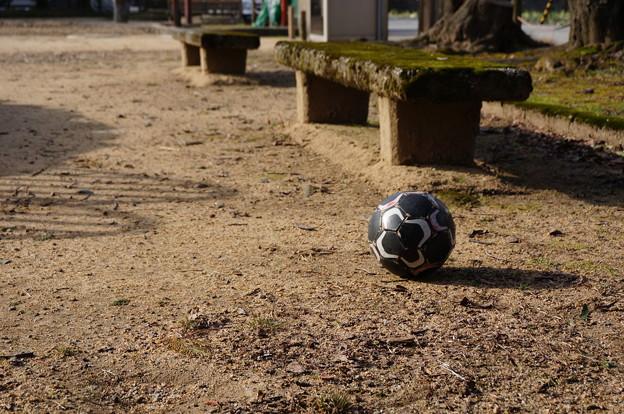 ボールとベンチ