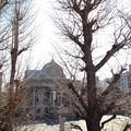 築地本願寺前(中央区)