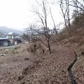 長窪城(小県郡長和町)
