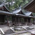 Photos: 吉野神宮(奈良県吉野町吉野山)摂社3社