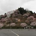 下千本駐車場(吉野町吉野山)