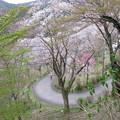 Photos: 七曲坂(吉野町吉野山)
