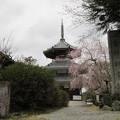 Photos: 吉野朝宮跡/妙法殿(吉野町吉野山)