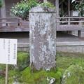 Photos: 如意輪寺(吉野町吉野山)天誅組総裁 藤本鉄石招魂碑