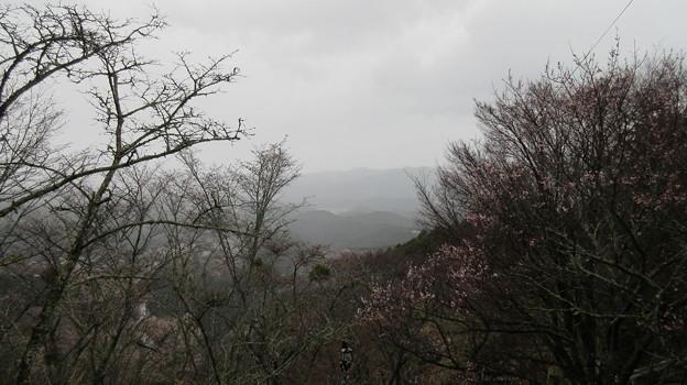 花矢倉古戦場(吉野町吉野山)花矢倉展望台脇より