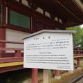 Photos: 高野山壇上伽藍(高野町)東塔