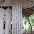 高野山壇上伽藍(高野町)智泉廟