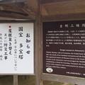 高野山 金剛三昧院(高野町)
